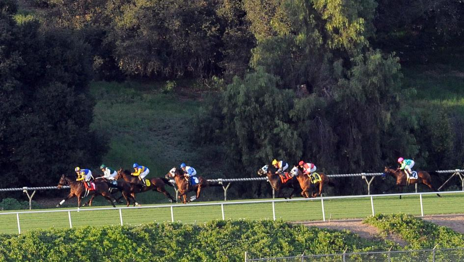 Los Ponies Longshots Seeing Green At Santa Anita