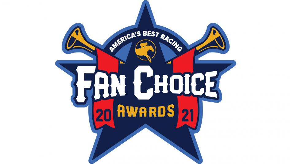 What You Need to Know About the 2021 Fan Choice Awards