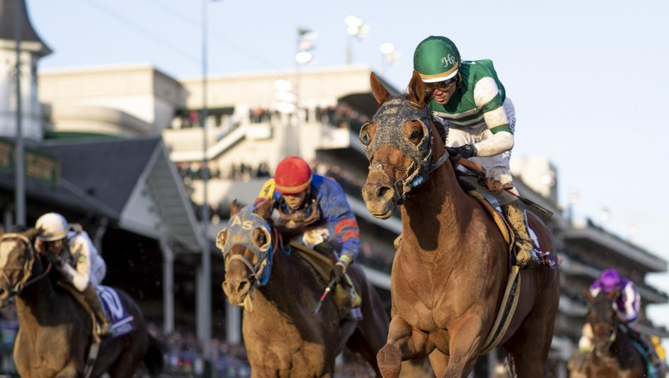 Accelerate capped a nearly perfect season with a Breeders' Cup Classic win.