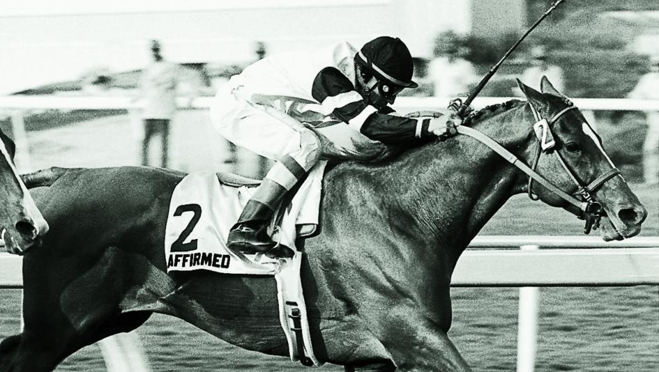 Affirmed wins the 1979 Hollywood Gold Cup.