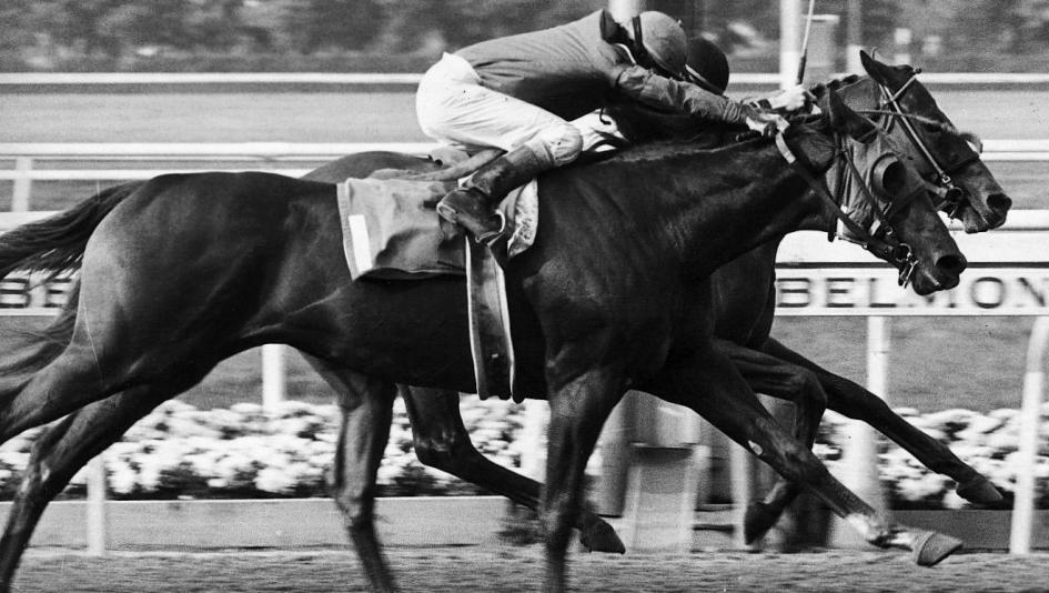 Affirmed, Alydar, and the Showdown at Saratoga