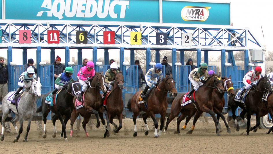 Triple Crown hopefuls will square off in the Gotham Stake at Aqueduct on Saturday.