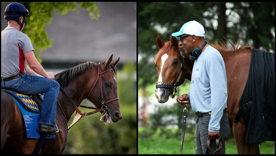 Slideshow Meet The 2019 Breeders Cup Classic Contenders