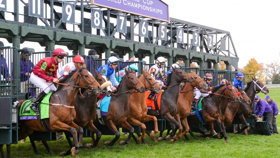 The Filly and Mare Turf has been a competitive race since its 1999 inception, especially in recent years.