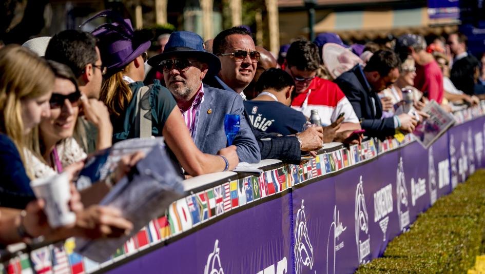 Careful Race Selection Key to Big Event Betting Strategy