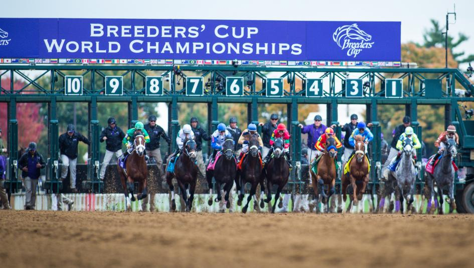 Breeders' Cup Pre-Entries Announced for 2020 World Championships | America's Best Racing