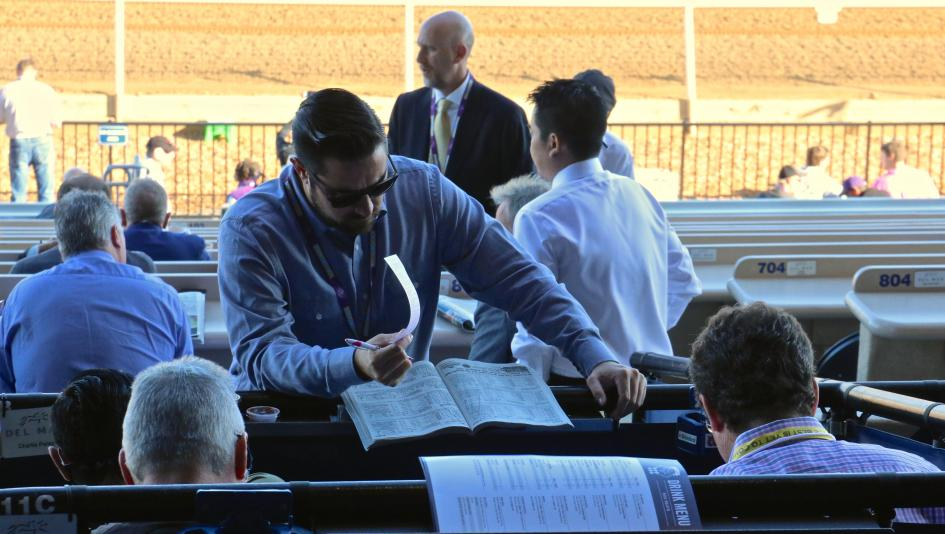Breeders' Cup Betting: Lesson Learned