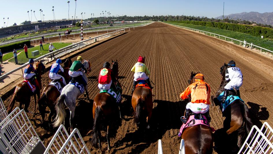 Using History To Profile The Breeders Cup Sprint Winner
