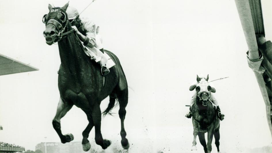 Buckpasser: The Nonchalant Champion