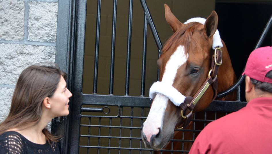 Kentucky Derby winner California Chrome is Taylor Made Farm's star resident.