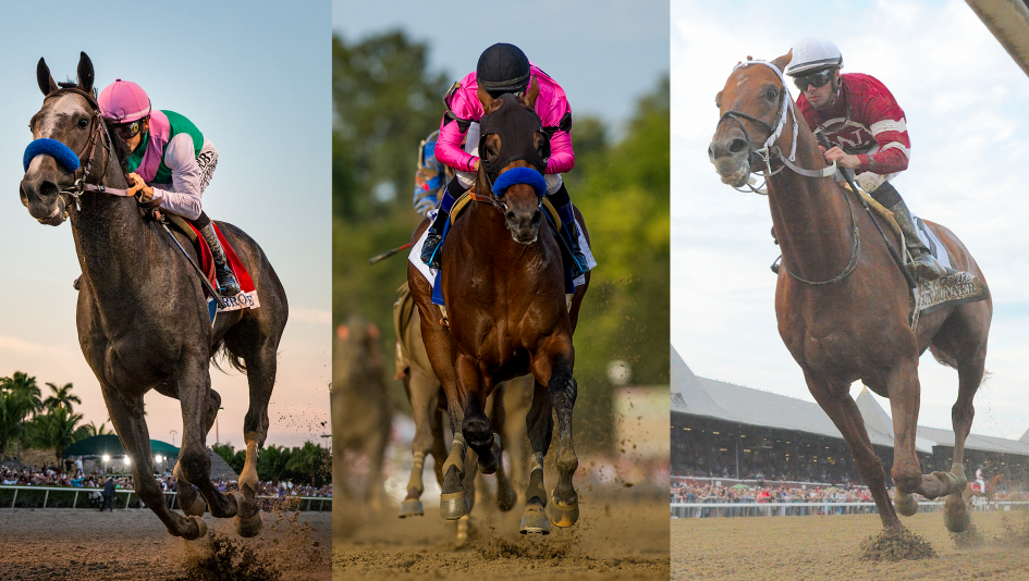 2017 Breeders Cup Classic Cheat Sheet Presented By Xpressbet