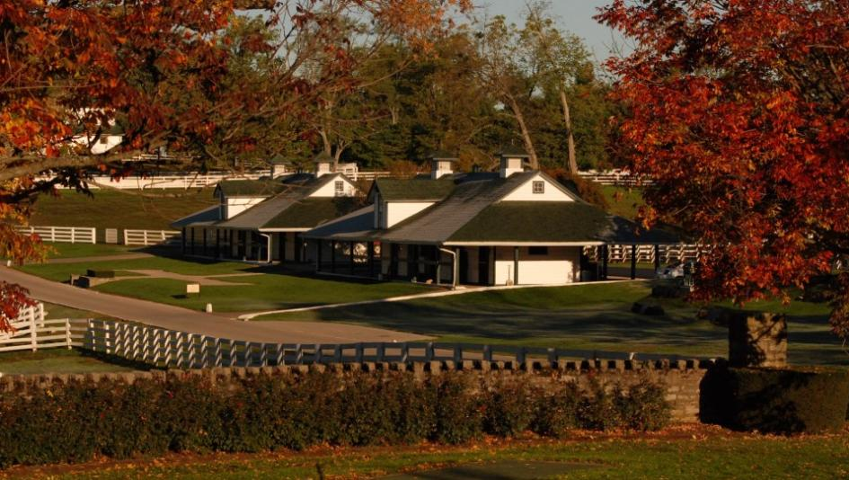 Visit Horse Country Darby Dan A Pillar Of Kentucky S Horse Heritage America S Best Racing