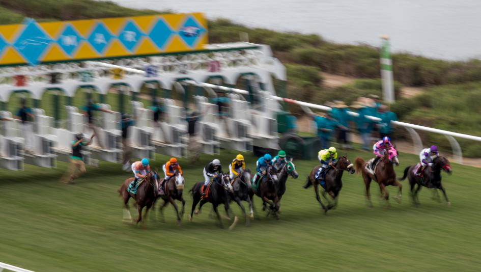Where to Watch/Listen: Horse Racing Coverage for Thanksgiving Week 2020