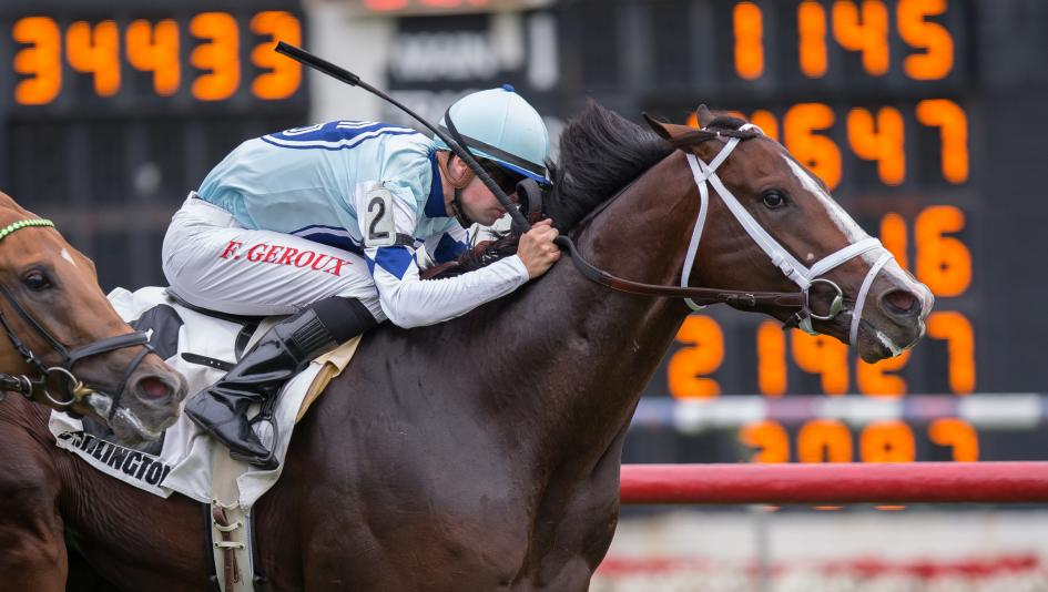 americasbestracing.net - Gallant Racehorse Divine Oath Earns Thanksgiving Retirement