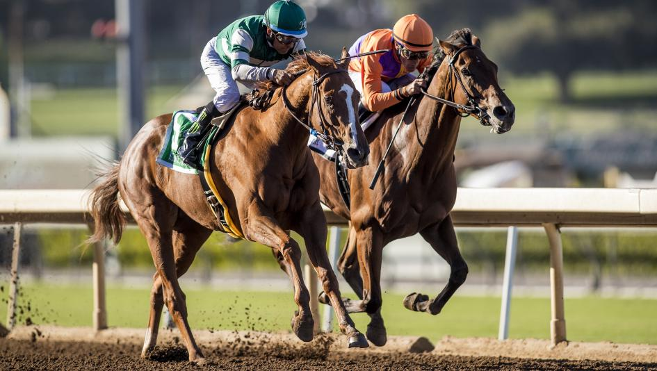 Using History As A Guide To Handicap The Zenyatta Stakes