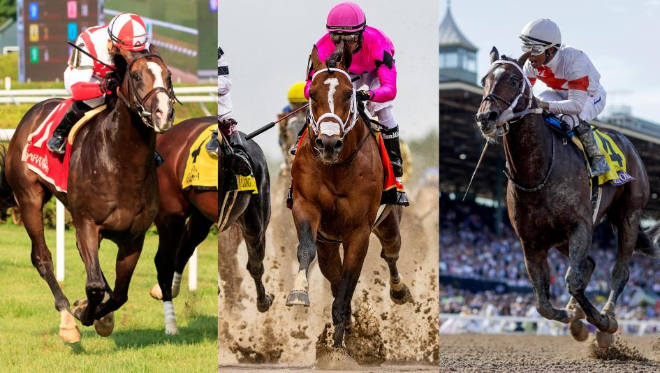 Bricks and Mortar, Maximum Security, and Mitole are the finalists for 2019 Horse of the Year.
