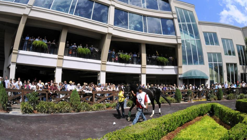 A full field of 3-year-olds will face off for Kentucky Derby points at Fair Grounds in the Lecomte Stakes on Saturday.
