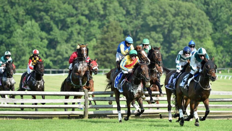 Five Reasons to Attend the 85th Fair Hill Races