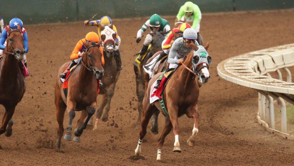fantasy horse racing