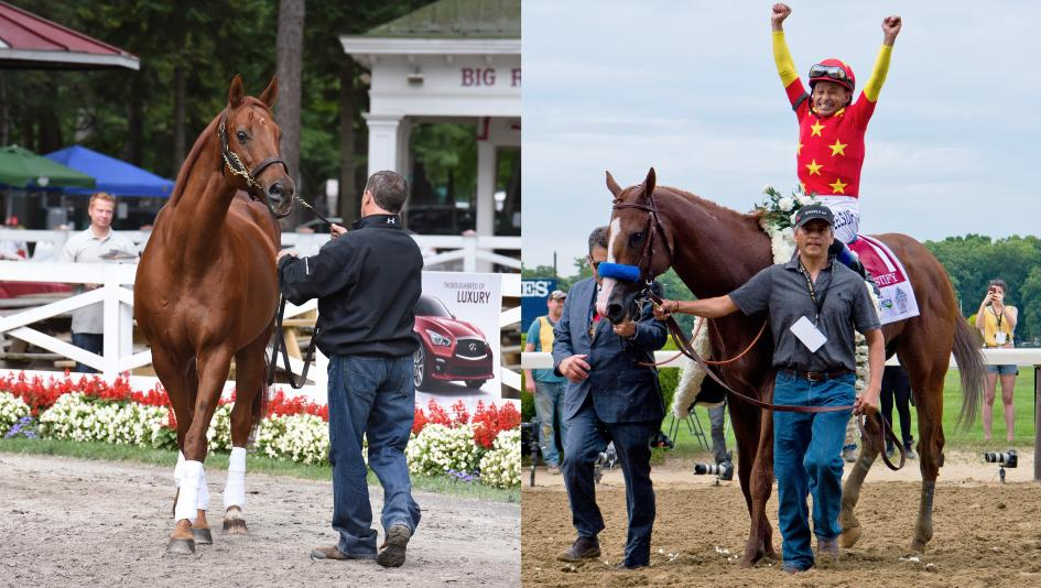 A Tale Of Two Belmonts Memories Of Funny Cide Justify And A Love