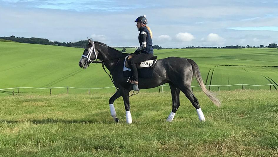 Royal Ascot Grass Is Greener On The Other Side For Gidu S