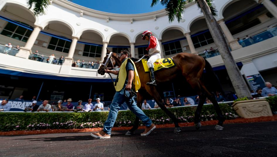 Stay Lucky Picks: Fountain of Youth Headlines Spectacular Card at Gulfstream