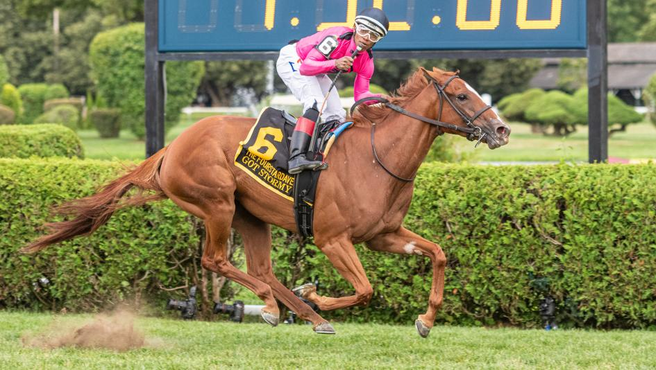 Got Stormy Punches Breeders Cup Mile Ticket With Record