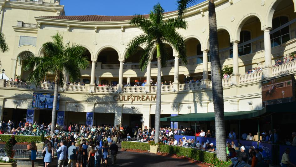 Dan S Double Using Stats To Uncover Gulfstream Park Plays