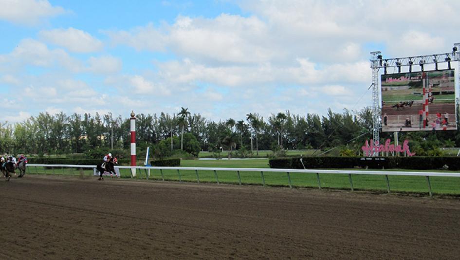 Hialeah Racing Park