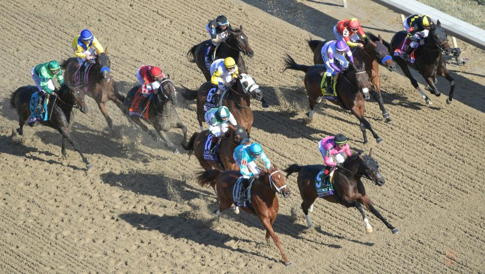 Using History to Handicap the 2020 Breeders' Cup Distaff