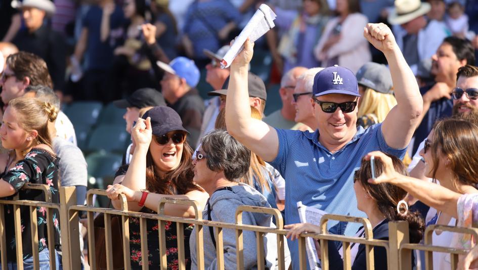 Evaluating Deep Buena Vista Field in Search of Top Win Contenders