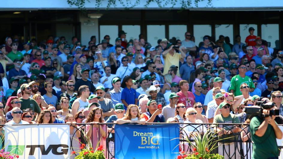Ten Things to Know Before You Go: The Haskell Invitational