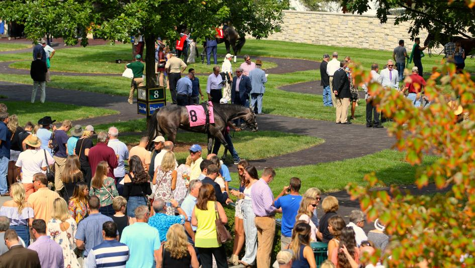 Stay Lucky Picks: Keeneland Stakes Highlight Challenging Weekend