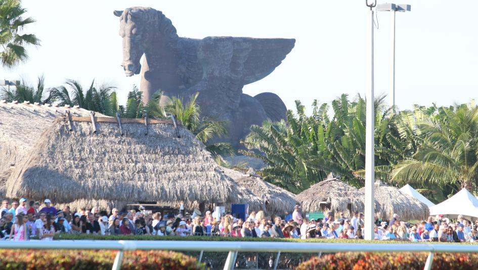 Ten Things to Know Before You Go: The Pegasus World Cup