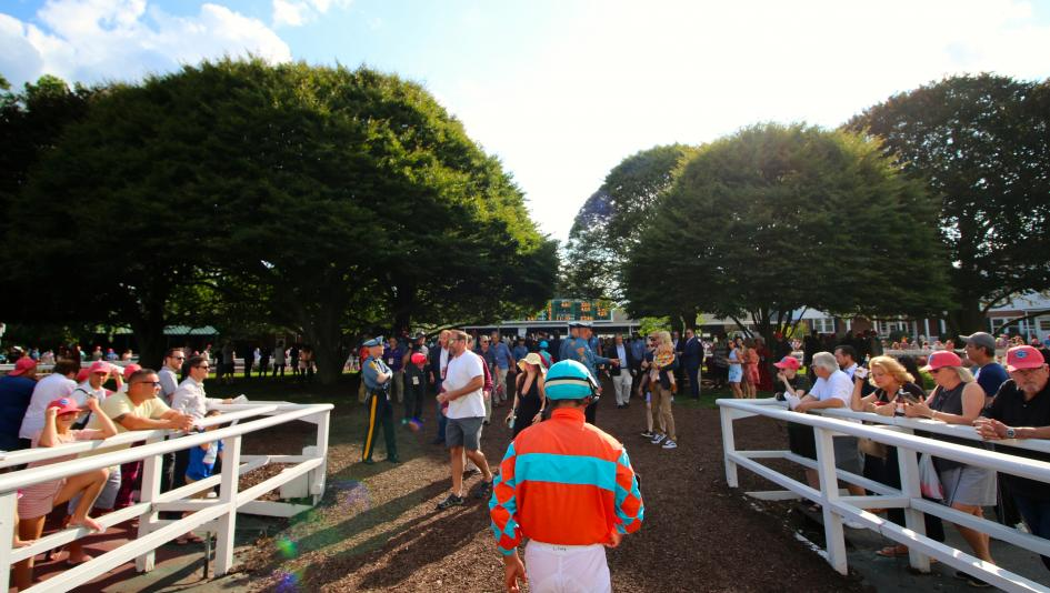 Where To Watch Listen During Haskell Invitational Week 2019 America S Best Racing