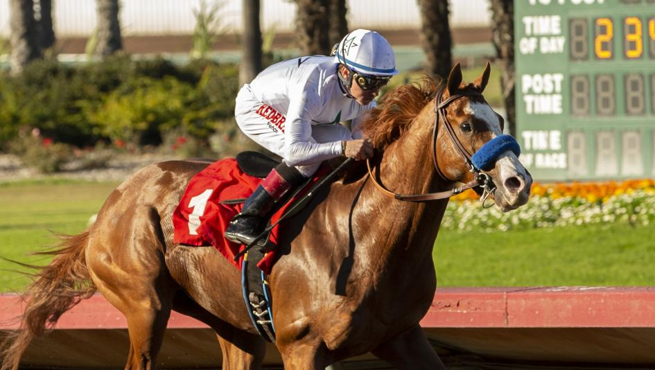 Why Improbable is the Real Deal for 2019 Kentucky Derby Trail