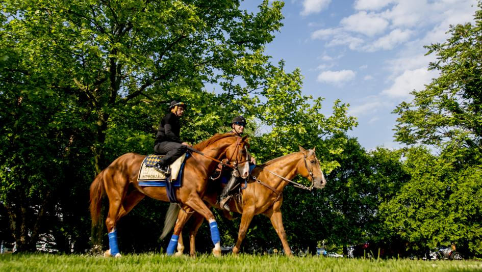 Improbable is the morning-line favorite for the Preakness, but there is no clear standout in the field.