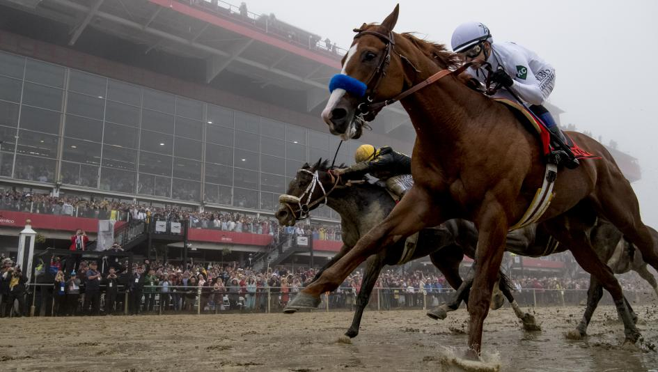 Determined Justify Wins Preakness, Triple Crown in Sight