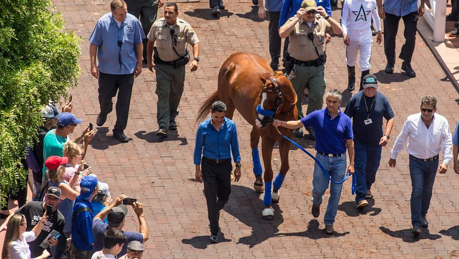Triple Crown winner Justify will parade at Del Mar this weekend.