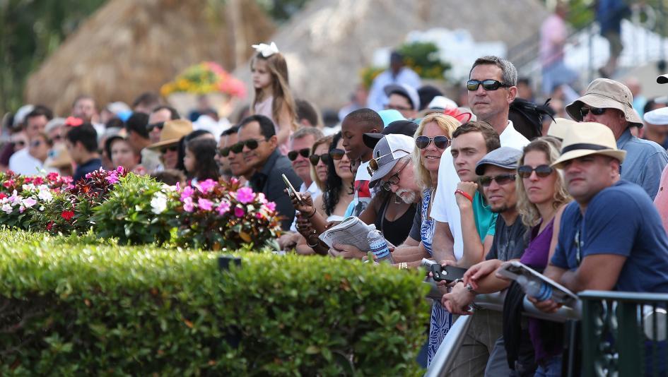 Top Jockeys to Watch at Gulfstream Park this Winter