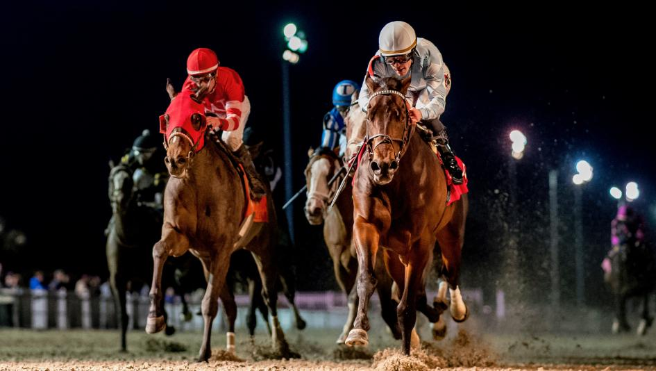 After finishing 1-2 in a division of last month's Rebel Stakes, Modernist (right) and Major Fed are among the contenders for Saturday's Louisiana Derby.