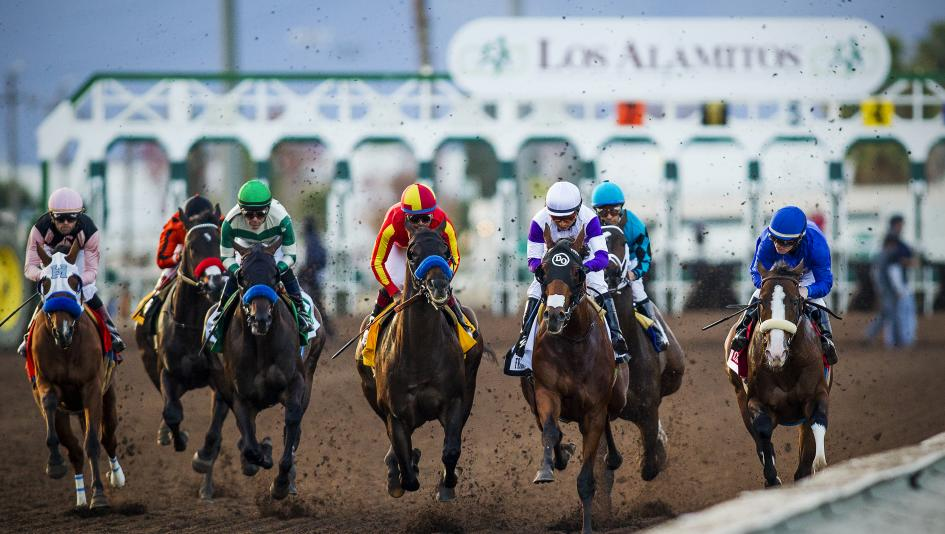 Los Ponies Longshots: Starlet Surprise, Holiday Pick