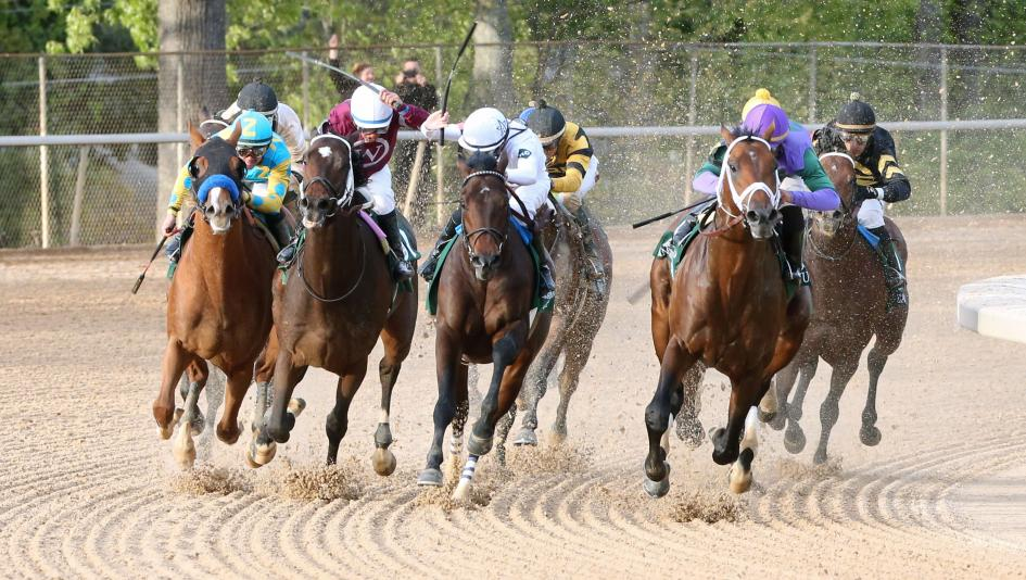 Magnum Moon wins Arkansas Derby for Springfield owners; next likely Kentucky Derby