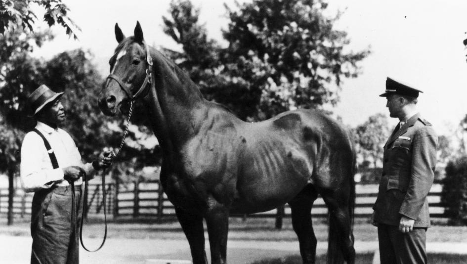 Man o' War is regarded as one of the greatest Thoroughbreds of all time.