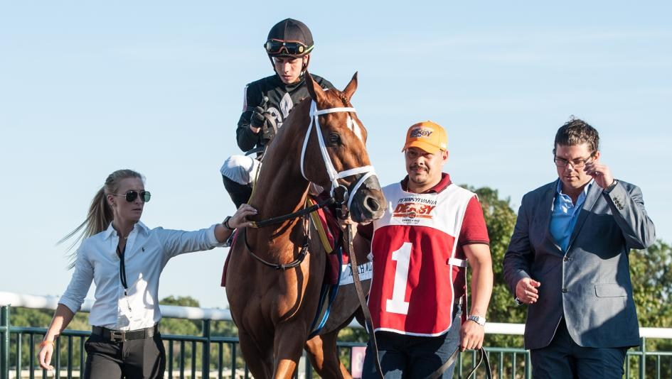 Math Wizard is aiming for the Breeders' Cup less than a year after being claimed for $25,000.