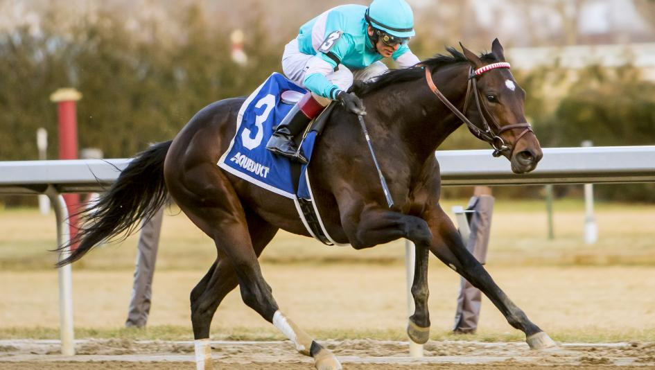 Mind Control wins the Jerome Stakes to pick up 10 Kentucky Derby points.