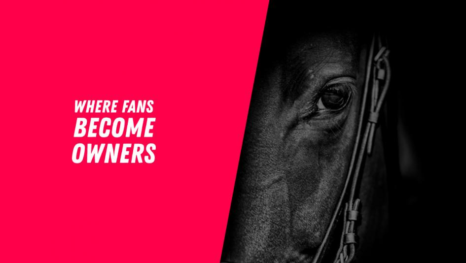 Dreaming of Owning a Horse? With MyRacehorse You Can, Starting at $100