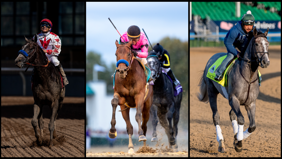 picture relating to Kentucky Derby Printable Lineup named 2019 Kentucky Derby Cheat Sheet Americas Easiest Racing