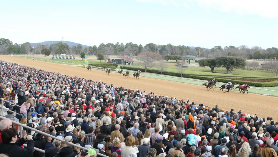 Oaklawn Park's opening weekend featured large crowds, top racing, and plenty of corned beef and sunny skies.