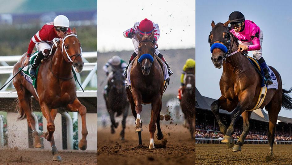 Gun Runner Collected And West Coast Left To Right Headline What Promises Be A Competitive Second Edition Of The Pegasus World Cup On Jan 27